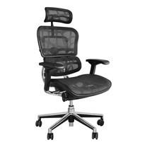 ERGOHUMAN THAILAND เก้าอี้สุขภาพ ERGOHUMAN 2 (Black)