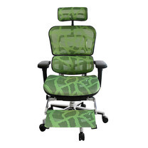 ERGOHUMAN THAILAND เก้าอี้สุขภาพ ERGOHUMAN-PLUS (Green)