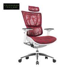 ERGOHUMAN THAILAND เก้าอี้สุขภาพ IOO (Red)