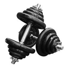 Power Reform ดัมเบล Black Plate 40 kg