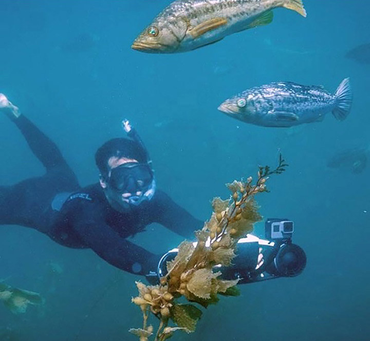 03---robosea-seaflyer---blue-7.jpg