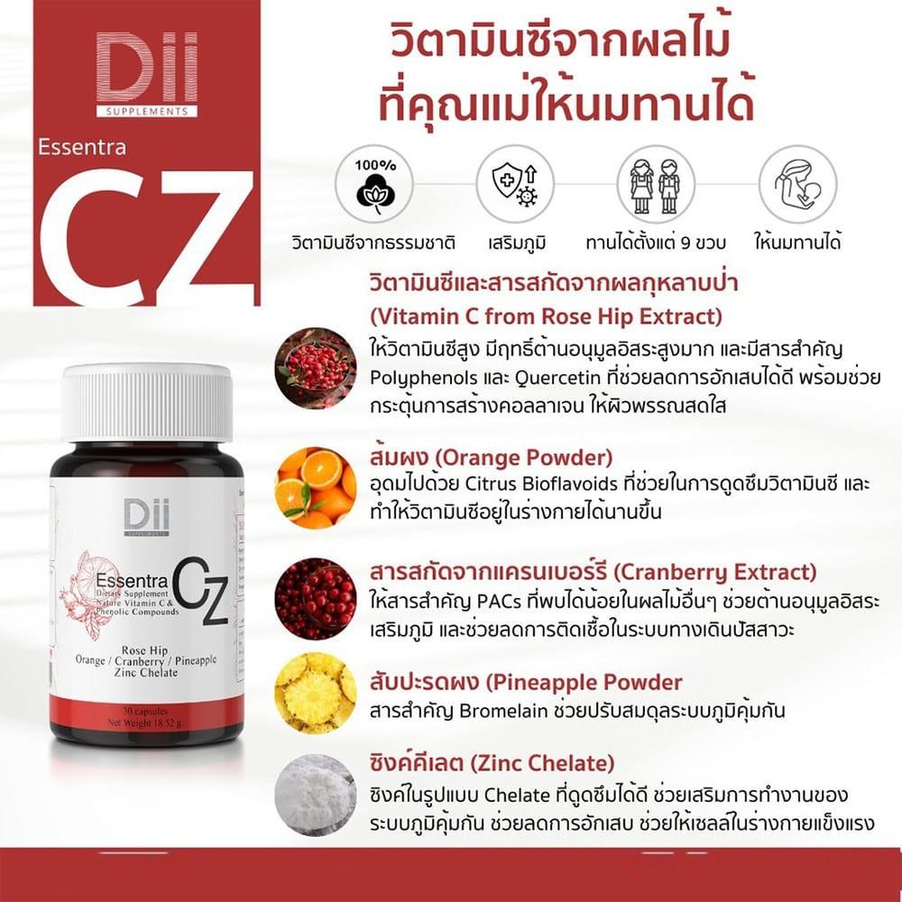 03-dii-cz-4.jpg