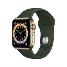 Apple Watch Series 6 GPS+Cellular 40mm Gold Stainless SteelCase with Sport Band - Cyprus Green