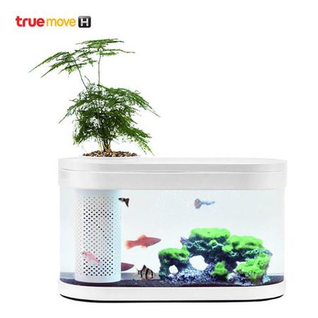 Xiaomi Descriptive Geometry Amphibious Ecological Lazy Fish Tank
