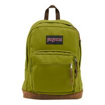 กระเป๋าเป้ JanSport รุ่น TYP704X RIGHT PACK - FOREST MOSS