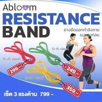 ยางยืดออกกำลังกาย แบบวงกลม (Pull Up Resistance Band Exercise Loop ) (มีสีให้เลือก)