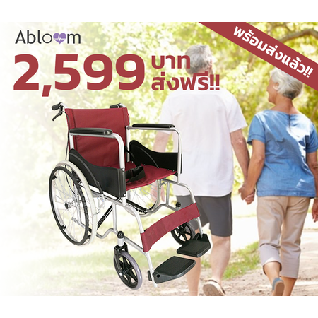 วีลแชร์ รถเข็นผู้ป่วย เหล็กชุบ พับได้ พร้อมเบรคมือ Standard Foldable Wheelchair - Red
