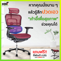 DF Prochair   เก้าอี้เพื่อสุขภาพ รุ่น Ergo 2 (T168) สีแดง แถมฟรี!! ที่พักเท้า