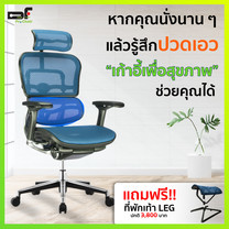 DF Prochair เก้าอี้เพื่อสุขภาพ รุ่น Ergo 2 (T168) สีน้ำเงิน แถมฟรี!! ที่พักเท้า