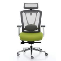 Ergotrend เก้าอี้เพื่อสุขภาพ เก้าอี้สำนักงาน เก้าอี้ทำงาน เออร์โกเทรน รุ่น ERGO-X Green