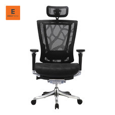 Ergotrend เก้าอี้เพื่อสุขภาพ รุ่น ERGO-FLEX-ZB - สีดำ