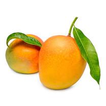 มะม่วง อาร์ทูอีทู 1 กก. | R Two E Two Mango 1Kg