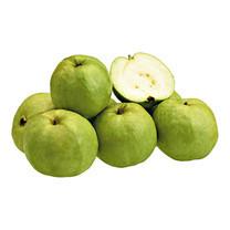 ฝรั่งแป้นสีทอง 1 กก. | Panseetong Guava 1Kg