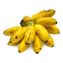 กล้วยไข่ 1 หวี | Lady Finger Banana