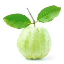 ฝรั่ง Guava 1 กก.