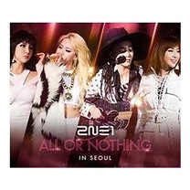 CD 2014 2NE1 World Tour LIVE - ALL OR NOTHING in SEOUL