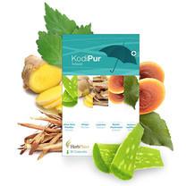 Herb Plus Kodipur (โคดิเพอร์) อาหารเสริมสกัดจากสมุนไพร 6 ชนิด 30 แคปซูล
