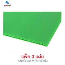 PANKO แผ่นฟิวเจอร์บอร์ด 65x49 ซม. หนา 2 มม. สีเขียวอ่อน (แพ็ก 3 แผ่น)