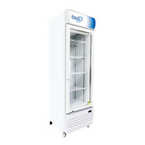 The Cool ตู้แช่เย็น 1 ประตู 8.9Q รุ่น Denise S250 DT