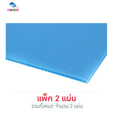 PANKO แผ่นฟิวเจอร์บอร์ด 65x80 ซม. หนา 3 มม. สีฟ้าอ่อน (แพ็ก 2 แผ่น)
