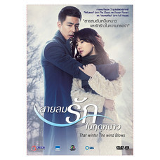 DVD ซีรีย์เกาหลี That Winter, The Wind Blows (4 Disc)