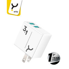 Why Wall Charger 3.1A 2 USB Luna White
