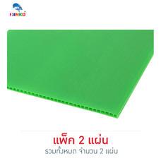 PANKO แผ่นฟิวเจอร์บอร์ด 65x80 ซม. หนา 3 มม. สีเขียวอ่อน (แพ็ก 2 แผ่น)