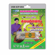 USB MP3 ตำราคู่มือ สอนดีดพิณ ชุดที่ 3