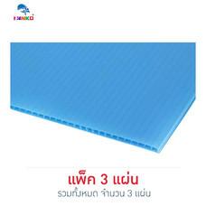PANKO แผ่นฟิวเจอร์บอร์ด 65x49 ซม. หนา 2 มม. สีฟ้าอ่อน (แพ็ก 3 แผ่น)