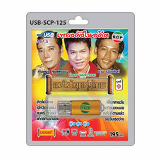 USB MP3 เพลงดังในอดีต แม่ไม้ลูกทุ่งไทย ชุดที่1