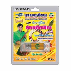 USB MP3 ตำราคู่มือ สอนดีดพิณ ชุดที่ 4