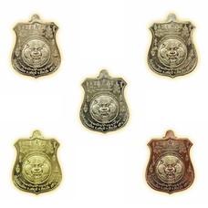 เหรียญพยัคฆ์จ้าวพยุห์ หลวงปู่หมุน ชุดกรรมการ 5 เหรียญ
