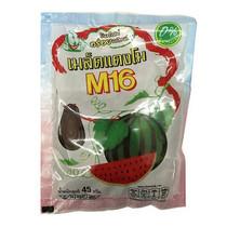 เอ็ม16 เมล็ดแตงโมอบ 45ก.