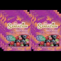เนเจอร์เซ็นเซชั่นผลไม้เบอร์รี่แห้ง 30 กรัม (แพ็ก 6 )