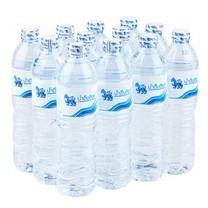สิงห์น้ำดื่ม 750 มิลลิลิตร แพ็ก 12 ขวด