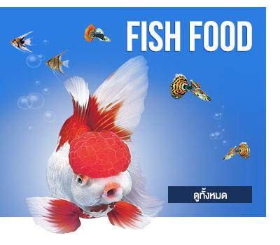 อาหารปลา