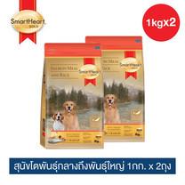 สมาร์ทฮาร์ท โกลด์ ปลาแซลมอนและข้าว สุนัขโตพันธุ์กลางถึงพันธุ์ใหญ่ 1กก.x 2 ถุง / SmartHeart GOLD Salmon Meal and Rice Adult Medium to Large Breed 1kg X 2 pieces