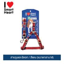 ไอ เลิฟ สมาร์ทฮาร์ท - สายจูงและรัดอก / สีแดง (ขนาดกลาง M) / I Love SmartHeart - Leash+Harness / Red (size M)