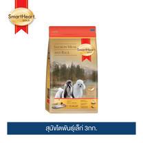 สมาร์ทฮาร์ท โกลด์ ปลาแซลมอนและข้าว สุนัขโตพันธุ์เล็ก 3กก. /  SmartHeart GOLD   Salmon Meal and Rice Adult Small Breed 3kg