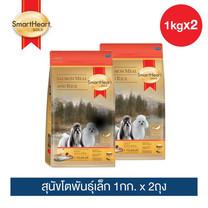 สมาร์ทฮาร์ท โกลด์ ปลาแซลมอนและข้าว สุนัขโตพันธุ์เล็ก 1กก. x 2 ถุง / SmartHeart GOLD   Salmon Meal and Rice Adult Small Breed 1kg X 2 pieces