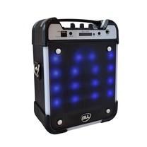 Portable Speaker SystemBLL3027(300W)