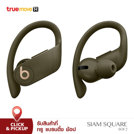 Beats Powerbeats Pro Totally Wireless Earphones