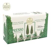 Nesti Dante Cypress Tree (250 ก.)