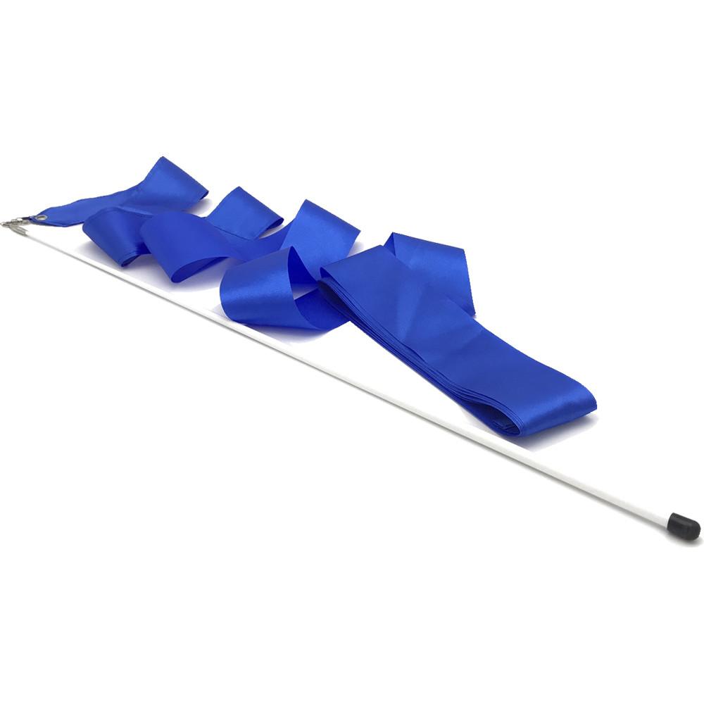 gym-stick-blue_1000x1000.jpg