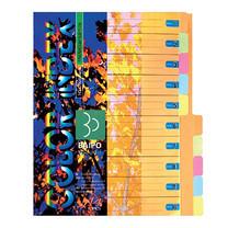 อินเด็กซ์กระดาษการ์ด ใบโพธิ์ 10 หยัก A4 คละสี