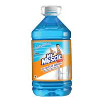 น้ำยาเช็ดกระจก MR.MUSCLE 5200 มล.