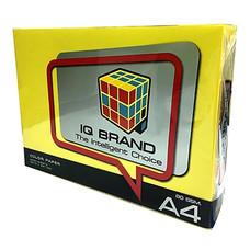 กระดาษสีถ่ายเอกสาร ไอคิว 80 แกรม A4 สีเหลืองเข้ม (500 แผ่น/แพ็ก)