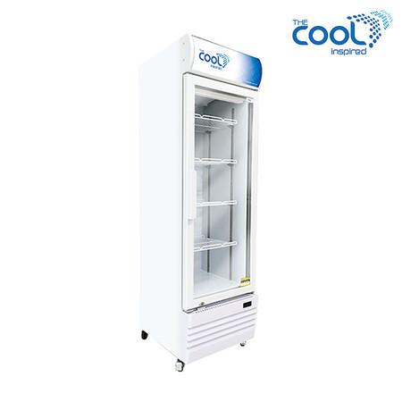 The Cool ตู้แช่เย็นรุ่น Denise S250