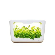 Xiaomi Tiny Green Mini Farm For Plants เครื่องปลูกผักระบบไฮโดรโปรนิกส์อัจฉริยะขนาด15 ต้น