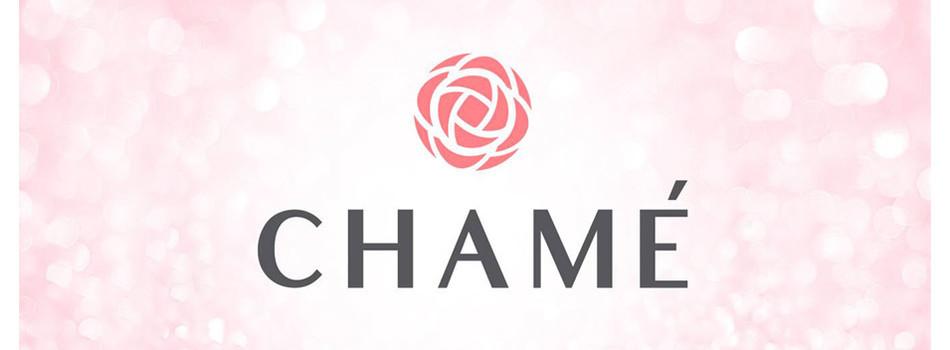 Chame's banner